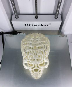 3D Printed Filigree Cranium by Dizingof on Ultimaker2 004