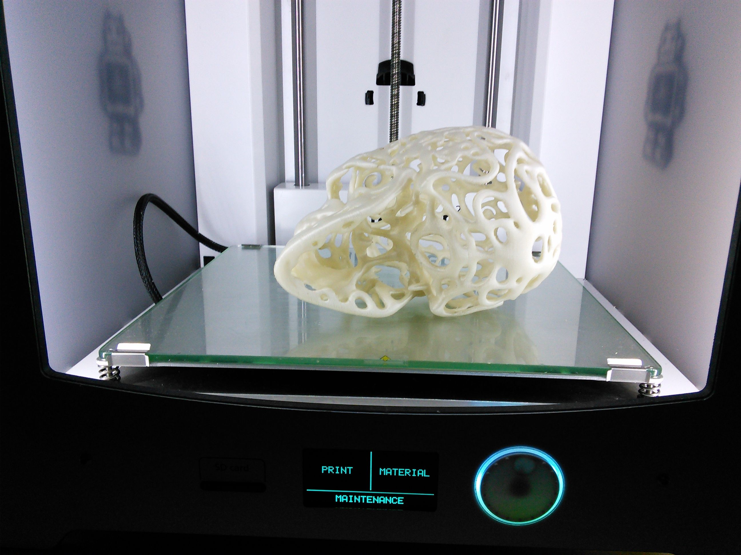 3D Printed Filigree Cranium by Dizingof on Ultimaker2 006