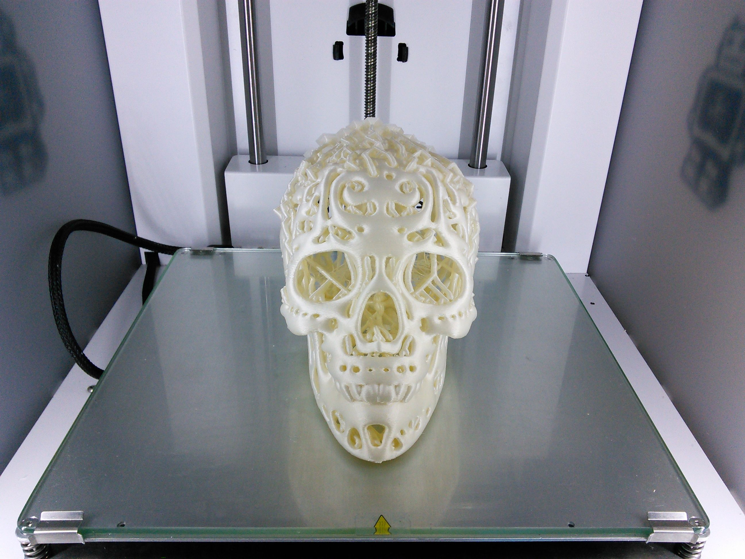3D Printed Filigree Cranium by Dizingof on Ultimaker2 020