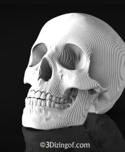 Sliced Skull by Dizingof-.13046